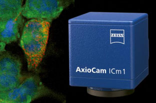 Zeiss AxioCam ICm1 顯微鏡專用CCD相機